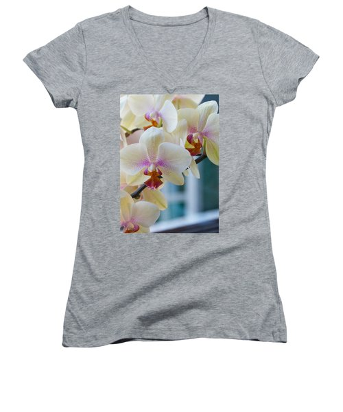 Orchids In The Morning Light Women's V-Neck T-Shirt (Junior Cut) by Debbie Karnes