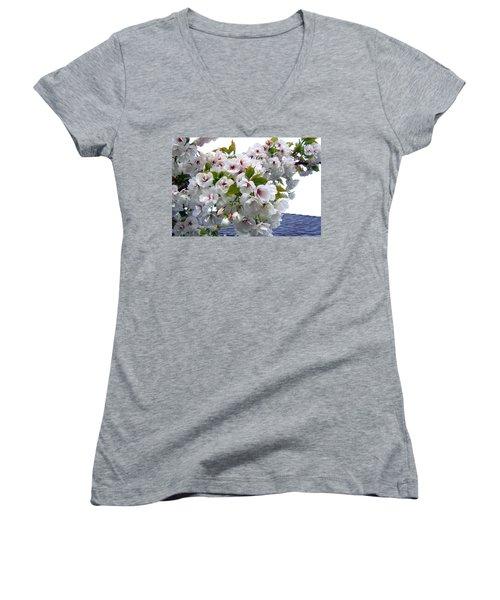 Oregon Cherry Blossoms Women's V-Neck T-Shirt (Junior Cut) by Will Borden