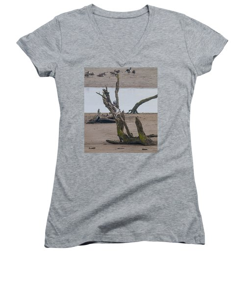Ospray With Fish Women's V-Neck T-Shirt (Junior Cut) by Brian Williamson