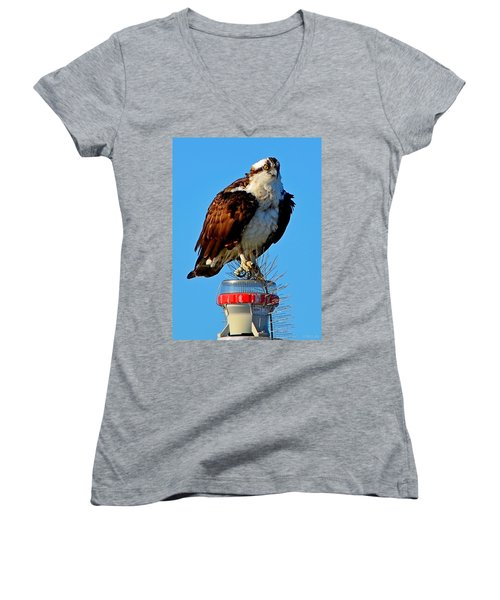 Women's V-Neck T-Shirt (Junior Cut) featuring the photograph Osprey Close-up On Water Navigation Aid by Jeff at JSJ Photography