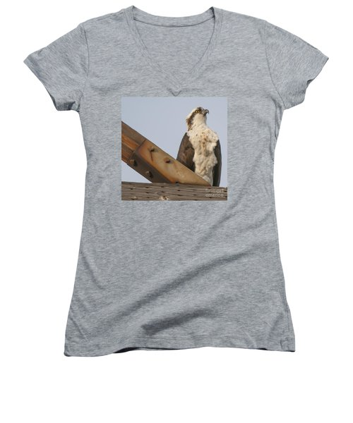 Women's V-Neck T-Shirt (Junior Cut) featuring the photograph Osprey -seahawk by Dale Powell