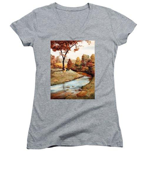 Our Secret Place Women's V-Neck T-Shirt (Junior Cut) by Duane R Probus