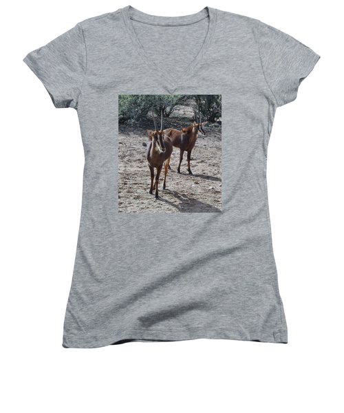 Out Of Africa B Women's V-Neck