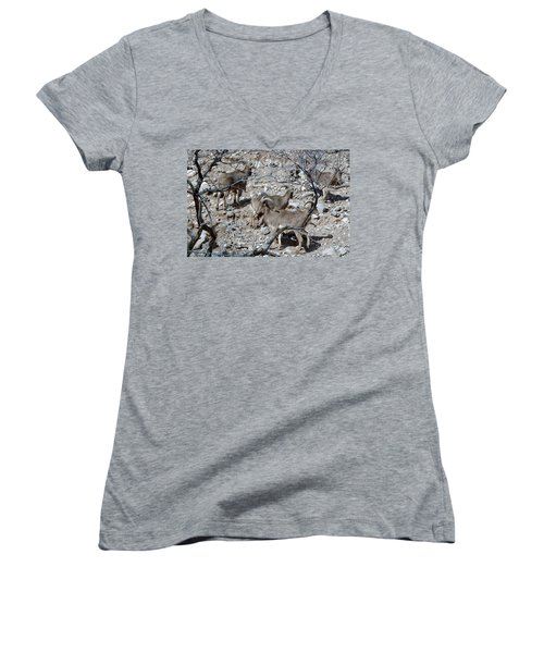 Out Of Africa  Mountain Goats Women's V-Neck