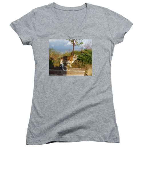 Out Of Africa  Tiger 1 Women's V-Neck (Athletic Fit)