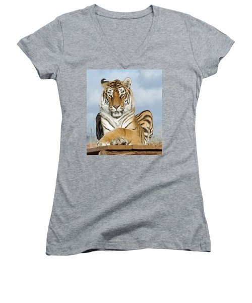 Out Of Africa Tiger 3 Women's V-Neck (Athletic Fit)