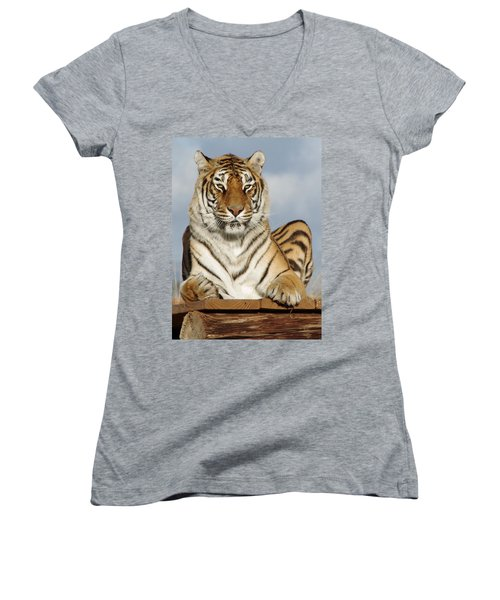 Out Of Africa Tiger 4 Women's V-Neck