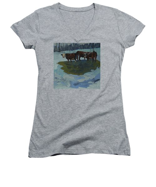 Outstanding In Their Field Women's V-Neck T-Shirt (Junior Cut)