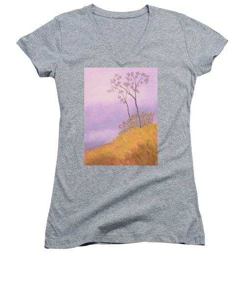 Ozark Glade Women's V-Neck T-Shirt