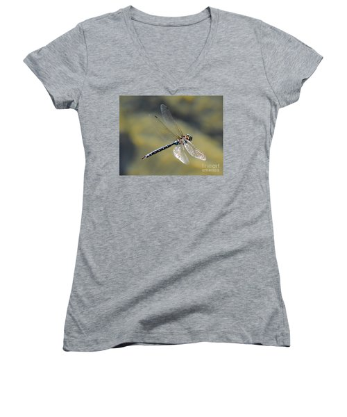 Paddletail Darner In Flight Women's V-Neck T-Shirt (Junior Cut) by Vivian Christopher