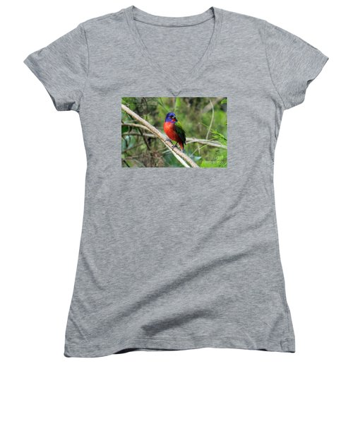 Women's V-Neck T-Shirt (Junior Cut) featuring the photograph Painted Bunting Photo by Meg Rousher