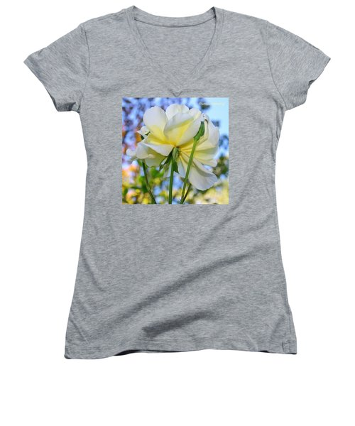 Pale Yellow Rose And Blue Sky Women's V-Neck T-Shirt