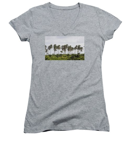 Palm Trees Women's V-Neck (Athletic Fit)