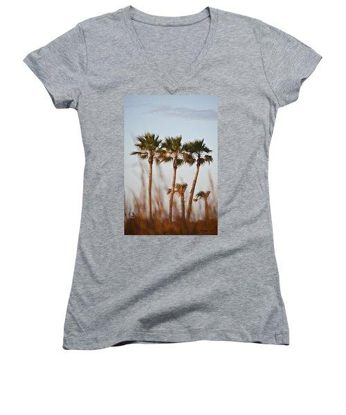 Palm Trees Through Tall Grass Women's V-Neck T-Shirt (Junior Cut) by Allen Sheffield