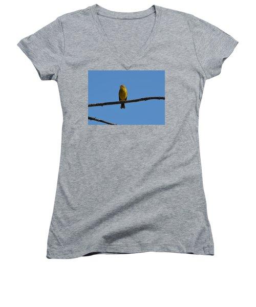 Palm Warbler Women's V-Neck T-Shirt (Junior Cut) by James Petersen