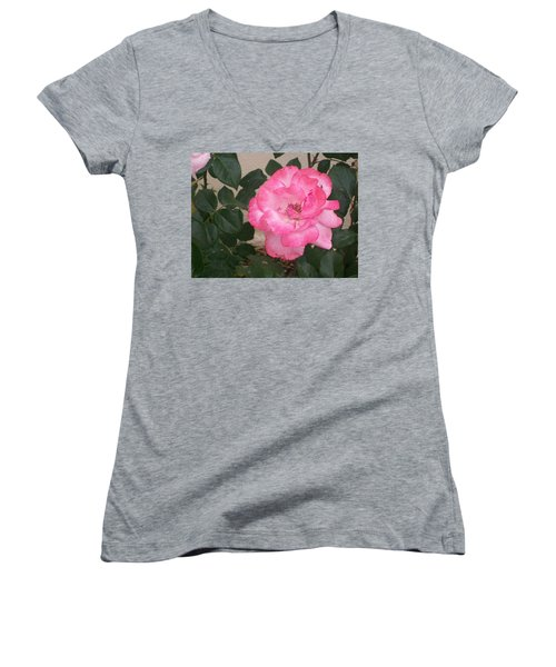 Passion Pink Women's V-Neck T-Shirt