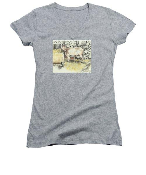 Cow In A Barn Women's V-Neck T-Shirt (Junior Cut)