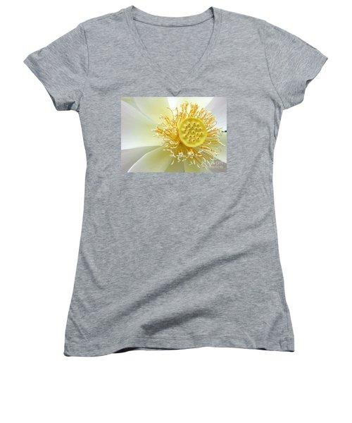 Pastel Lotus Women's V-Neck