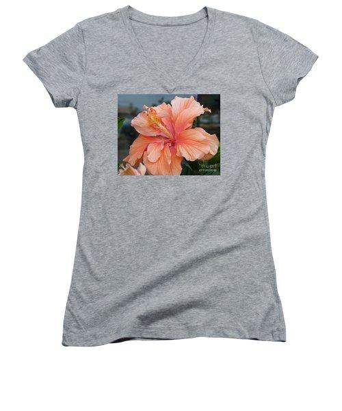 Women's V-Neck T-Shirt (Junior Cut) featuring the photograph Peach And Cream by Lingfai Leung
