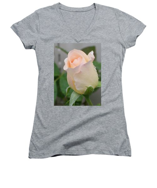 Women's V-Neck T-Shirt (Junior Cut) featuring the photograph Fragile Peach Rose Bud by Belinda Lee