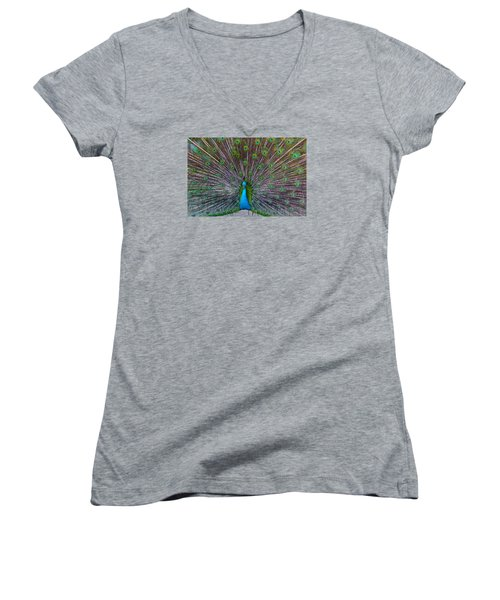 Peacock Women's V-Neck T-Shirt (Junior Cut) by Venetia Featherstone-Witty