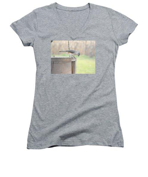 Peeking Chickadee Women's V-Neck T-Shirt