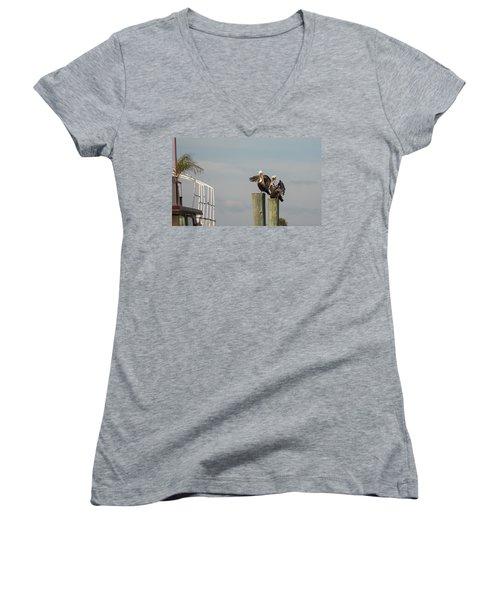 Women's V-Neck T-Shirt (Junior Cut) featuring the photograph Pelican Buddies by John M Bailey