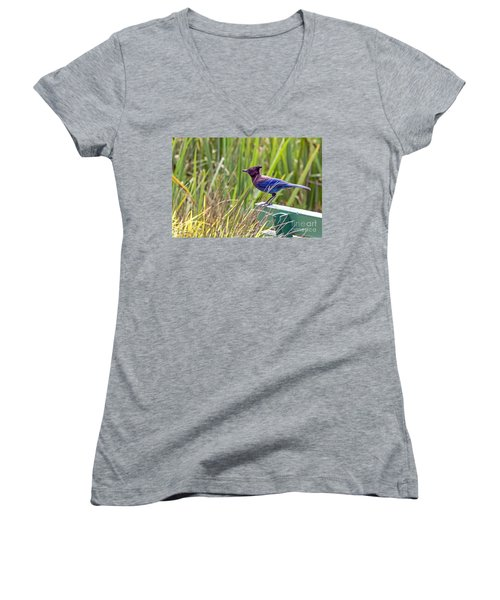 Perching Jay Women's V-Neck (Athletic Fit)