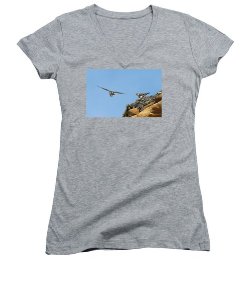 Peregrine Falcons - 1 Women's V-Neck