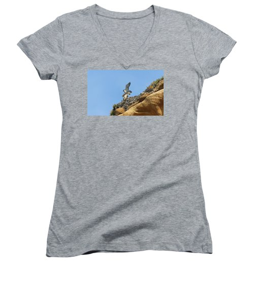 Peregrine Falcons - 3 Women's V-Neck