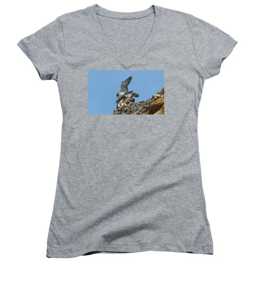 Peregrine Falcons - 4 Women's V-Neck