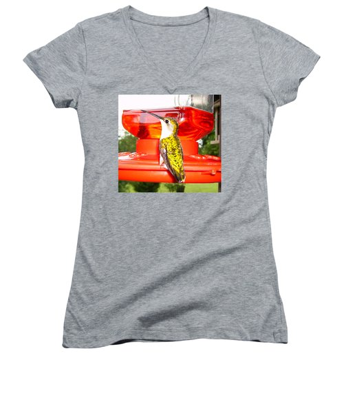 Women's V-Neck T-Shirt (Junior Cut) featuring the photograph Perfect Pose by Nick Kirby