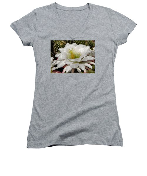 Women's V-Neck T-Shirt (Junior Cut) featuring the photograph Petals And Thorns by Deb Halloran