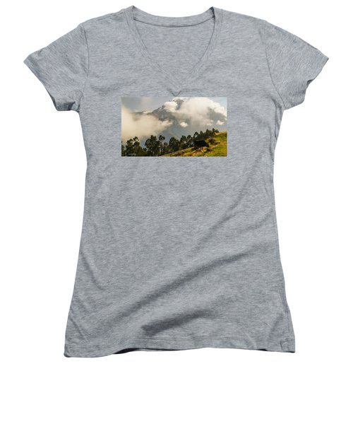 Peru Mountains With Cow Women's V-Neck T-Shirt
