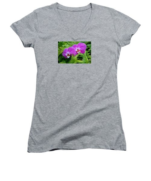 Phalaenopsis Moth Orchids Women's V-Neck T-Shirt (Junior Cut) by Venetia Featherstone-Witty