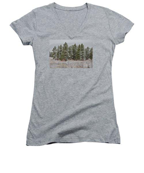 Pine Flurries Women's V-Neck T-Shirt