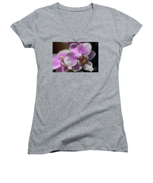 Pink And White Orchid Women's V-Neck T-Shirt