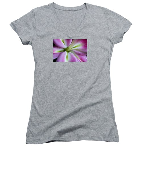 Pink Asiatic Lily Women's V-Neck T-Shirt (Junior Cut) by Julie Andel