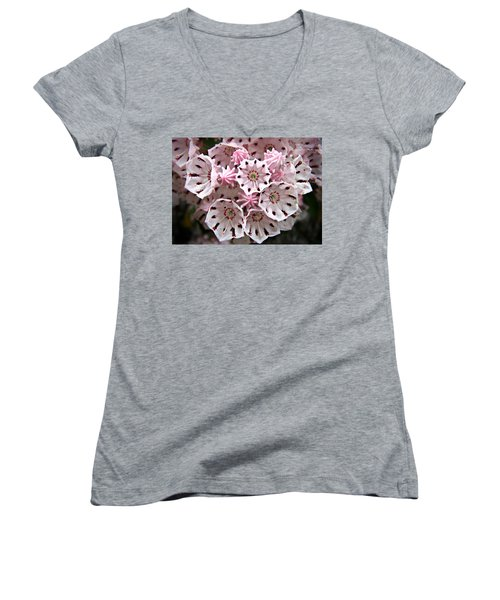 Pink Flowered Mountain Laurel Women's V-Neck T-Shirt