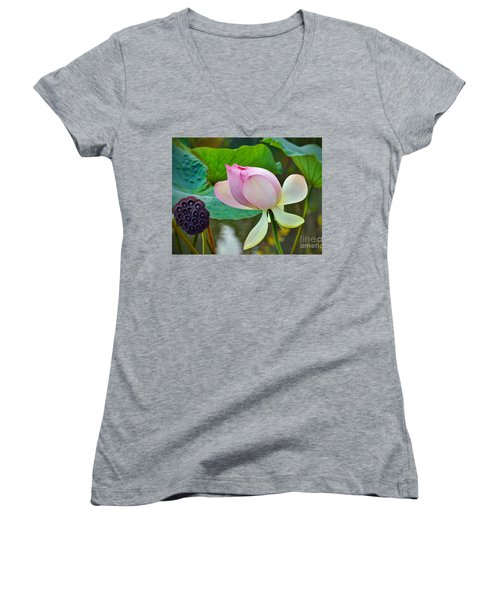 Pink Lotus Women's V-Neck T-Shirt (Junior Cut) by Savannah Gibbs
