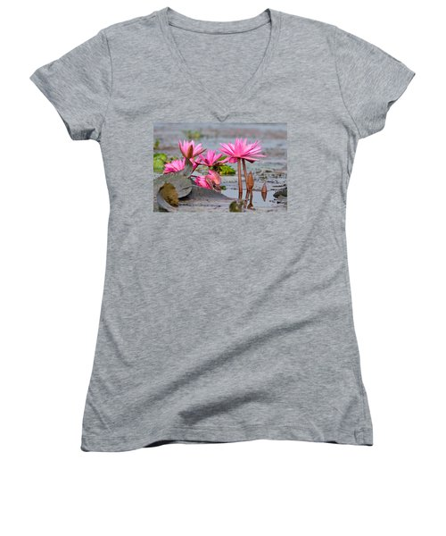 Pink Lotuses Women's V-Neck T-Shirt (Junior Cut) by Fotosas Photography