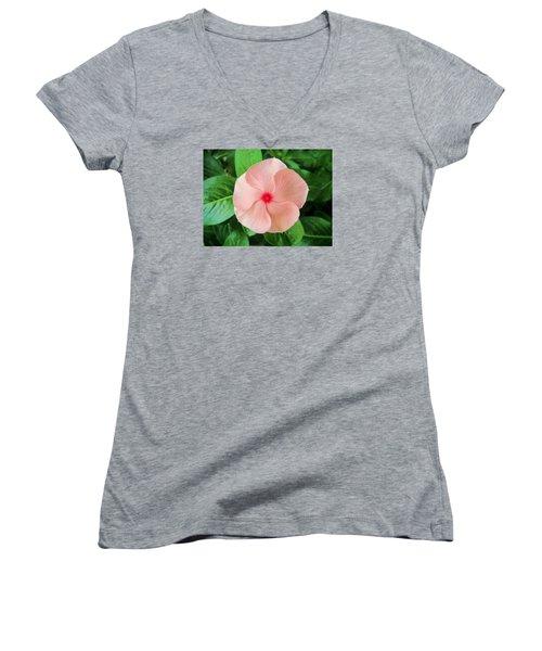 Pink Perfection Women's V-Neck T-Shirt (Junior Cut) by Deborah Lacoste