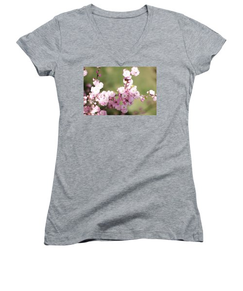 Pink Plum Branch On Green 2 Women's V-Neck (Athletic Fit)