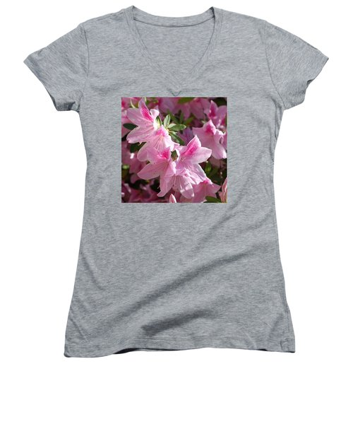 Pink Star Azaleas In Full Bloom Women's V-Neck T-Shirt