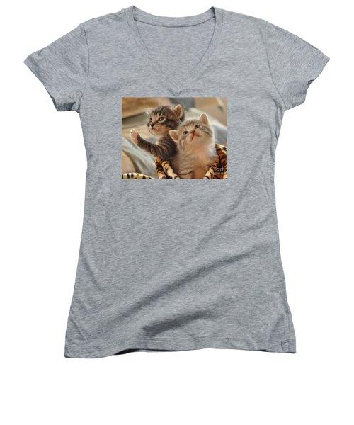 Playful Kittens Women's V-Neck T-Shirt