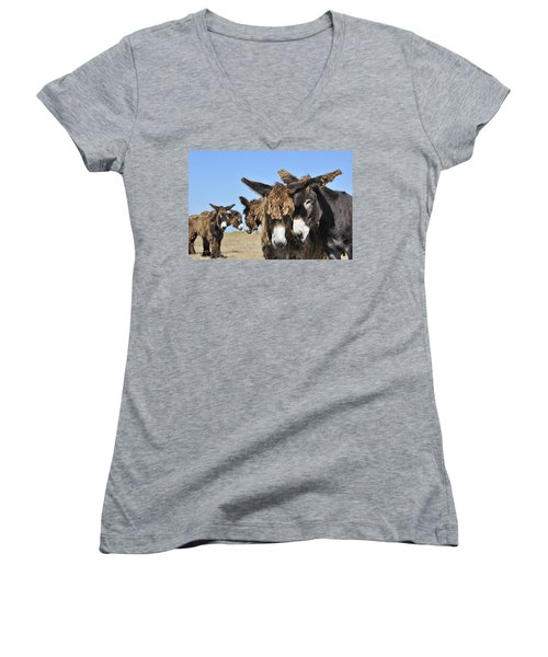 Women's V-Neck T-Shirt (Junior Cut) featuring the photograph Poitou Donkey 3 by Arterra Picture Library
