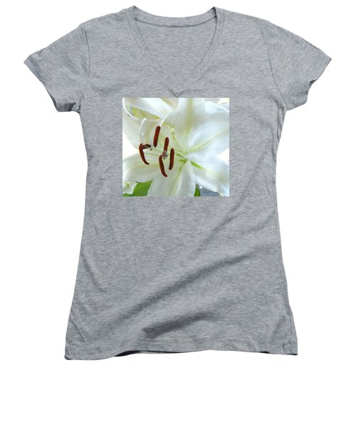 Pollinated White Tiger Lily Women's V-Neck