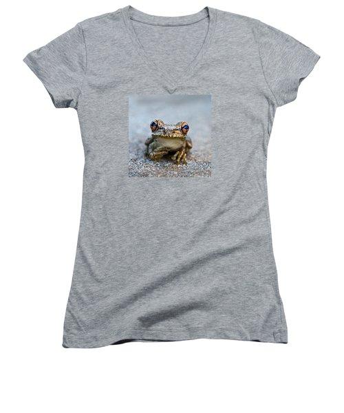 Pondering Frog Women's V-Neck T-Shirt (Junior Cut) by Laura Fasulo