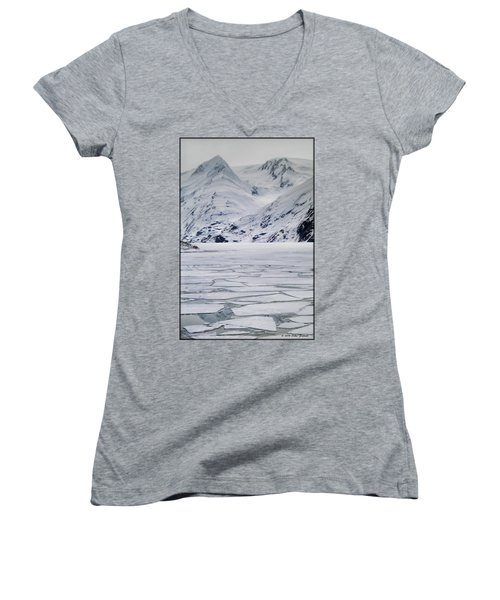 Portage Lake Women's V-Neck T-Shirt (Junior Cut)