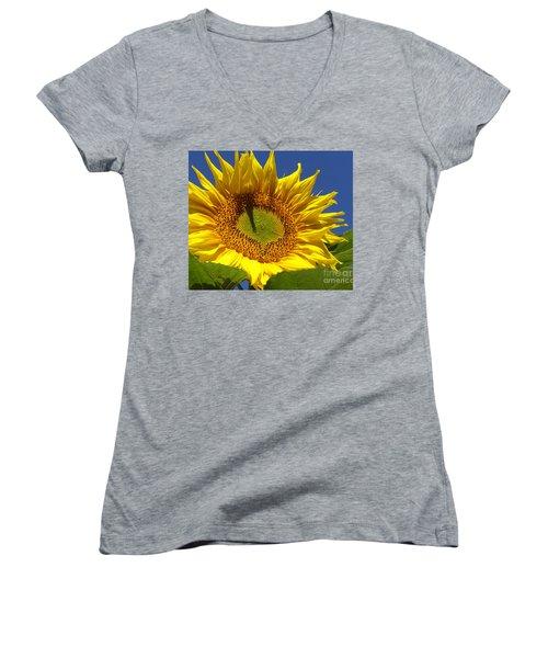 Portrait Of A Sunflower Women's V-Neck T-Shirt (Junior Cut) by Diane Miller